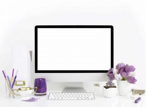MQ-Branding-Website-Design-084-SC-Stockshop-ShayCochrane